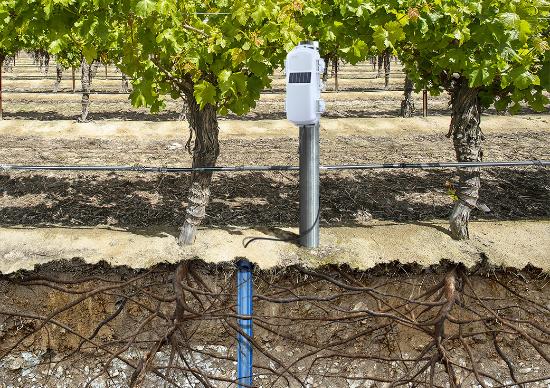 Onset präsentiert HOBOnet Multilevel Bodenfeuchte-Sensor